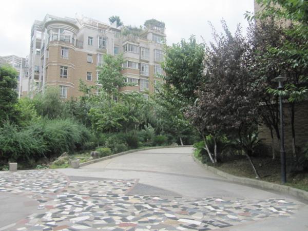 枫丹白露花园道路实景图