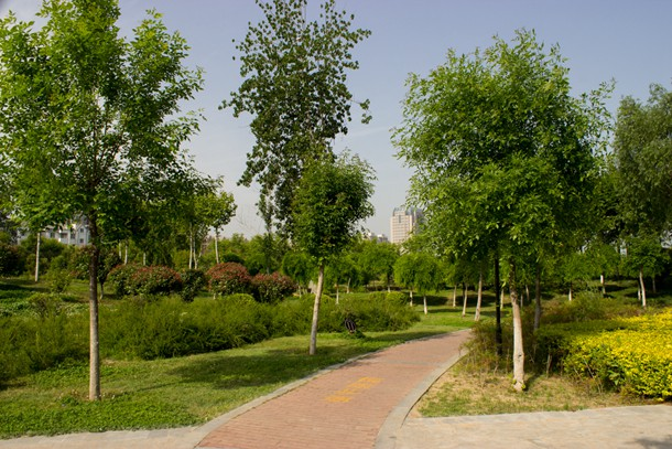 景观设计 (风景园林规划设计)